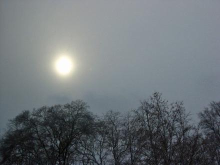 21-1-08-sun